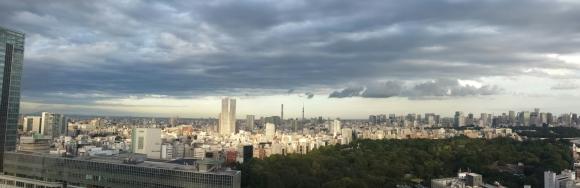 View over Tokyo Yoyogi park
