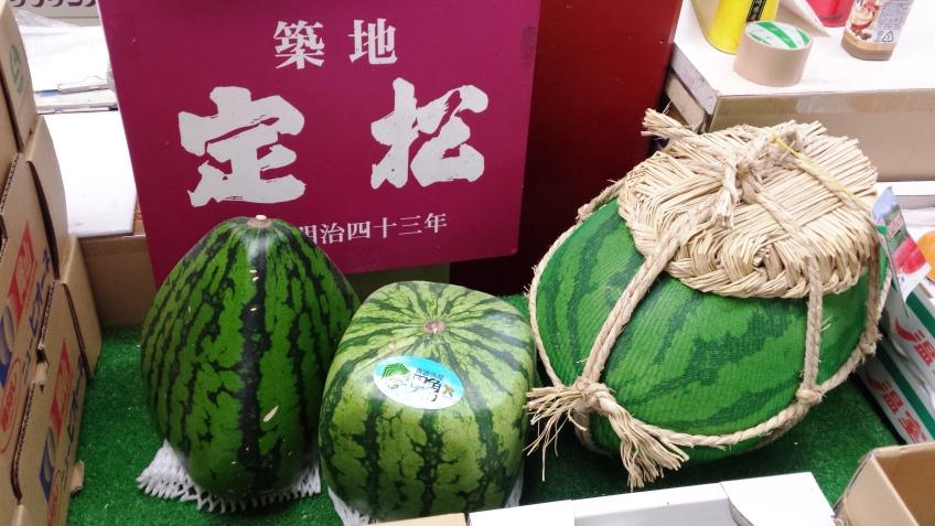 Square Watermelon?!
